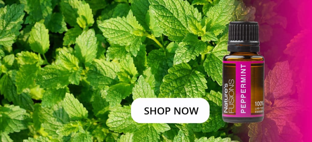 """peppermint leaves with oil bottle and clickable """"SHOP NOW"""""""