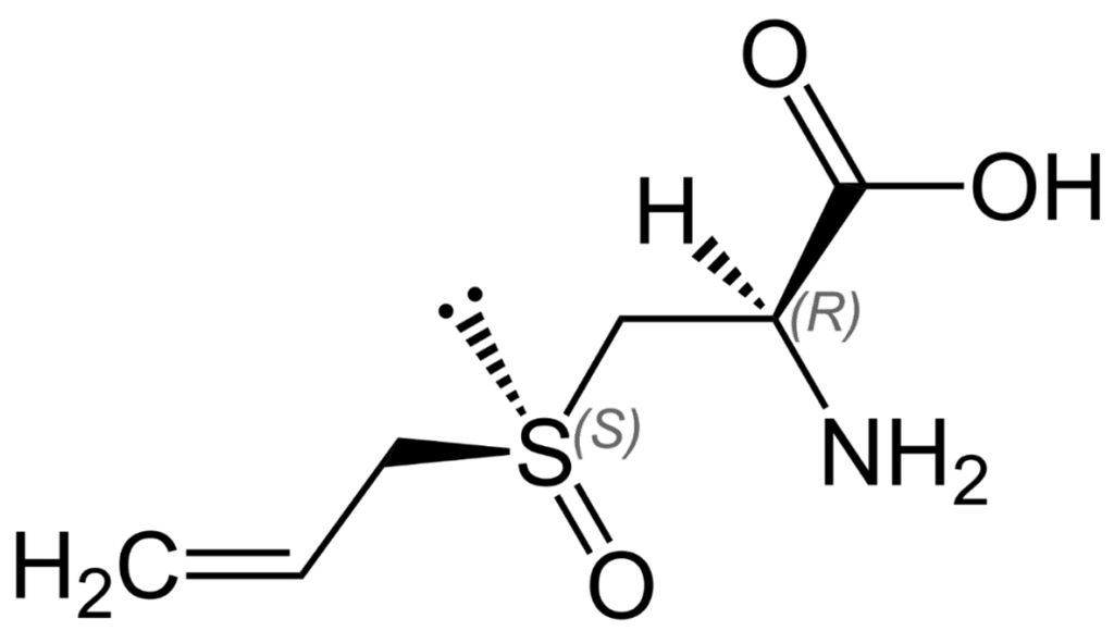 chemical structure of alliin