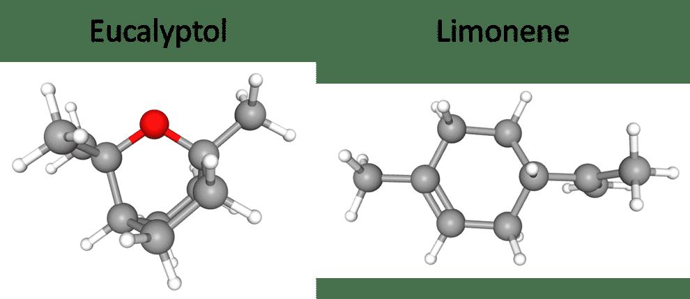 eucalyptol and limonene molecules